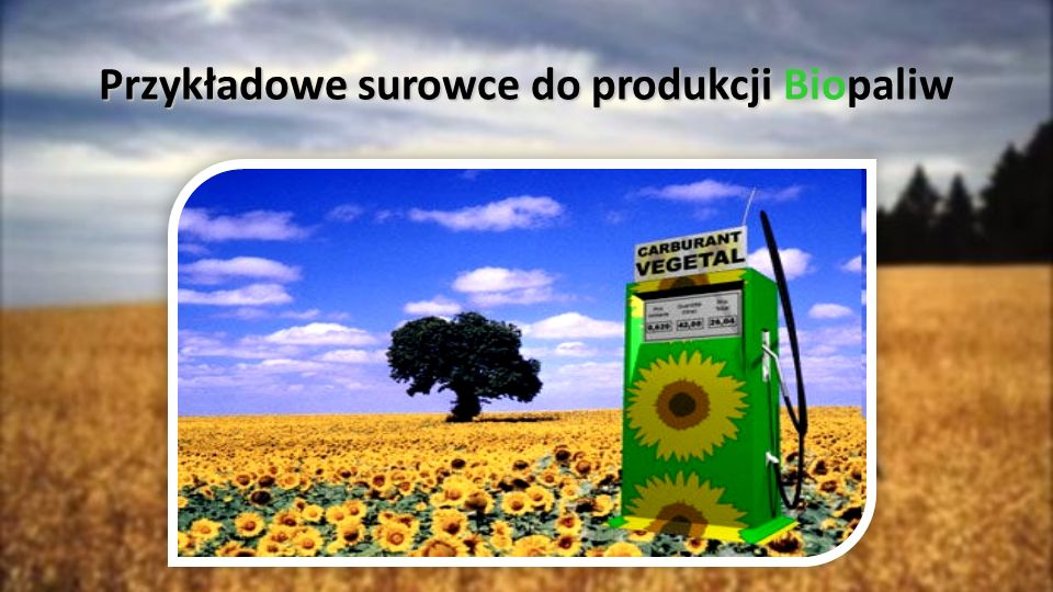 Przykładowe surowce do produkcji Przykładowe surowce do produkcji Biopaliw