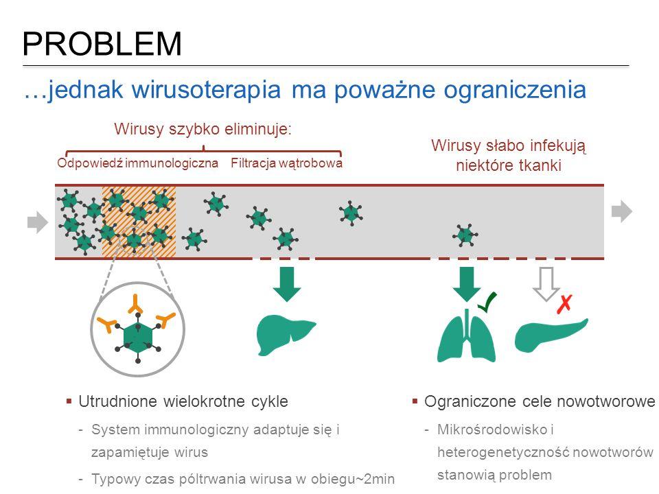 PROBLEM …jednak wirusoterapia ma poważne ograniczenia Wirusy słabo infekują niektóre tkanki  Utrudnione wielokrotne cykle  System immunologiczny ada