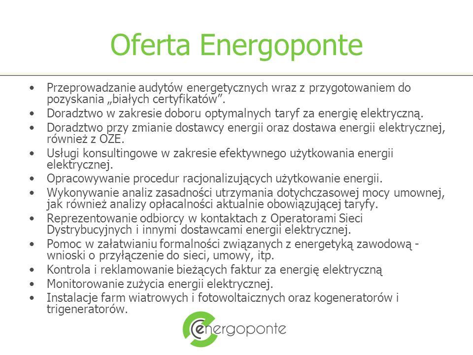 Korzyści dla klienta Zmniejszenie opłat za zużytą energię elektryczną poprzez: –Obniżenie cen zakupu energii –Optymalizację przesyłu i zużycia energii Korzystanie z wiedzy i doświadczeń Energoponte zdobytych na niemieckim rynku energii (know how)