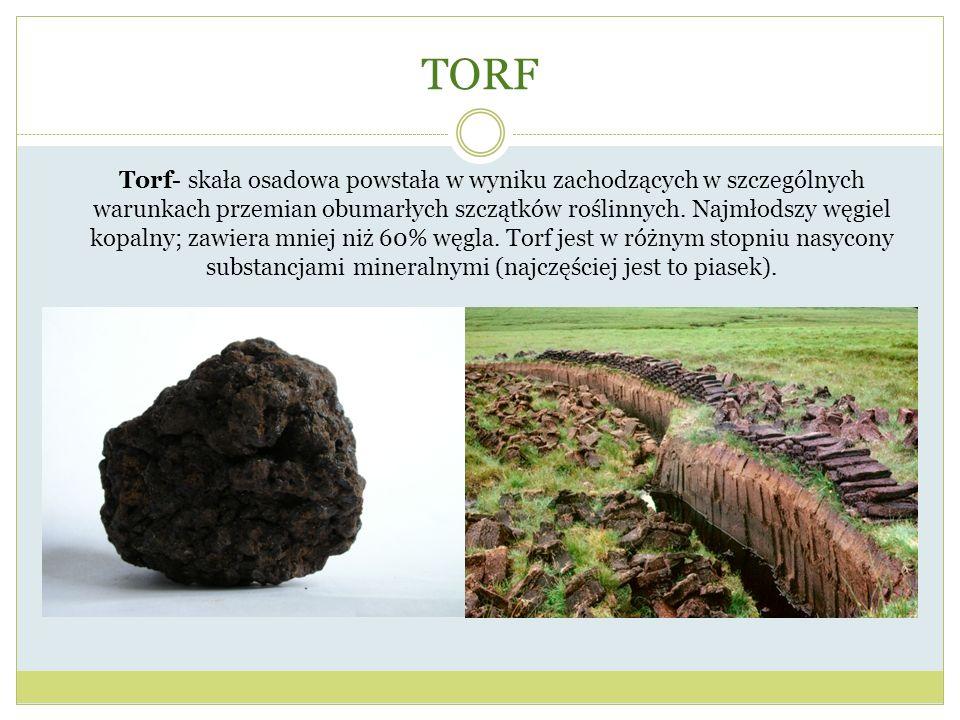 TORF Torf- skała osadowa powstała w wyniku zachodzących w szczególnych warunkach przemian obumarłych szczątków roślinnych. Najmłodszy węgiel kopalny;