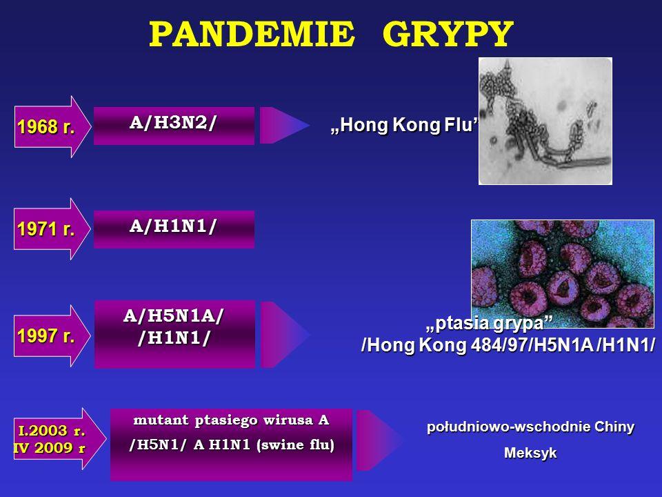 "A/H1N1/ 1971 r. ""ptasia grypa"" /Hong Kong 484/97/H5N1A /H1N1/ 1997 r. A/H5N1A/ /H1N1/ mutant ptasiego wirusa A /H5N1/ A H1N1 (swine flu) I.2003 r. IV"