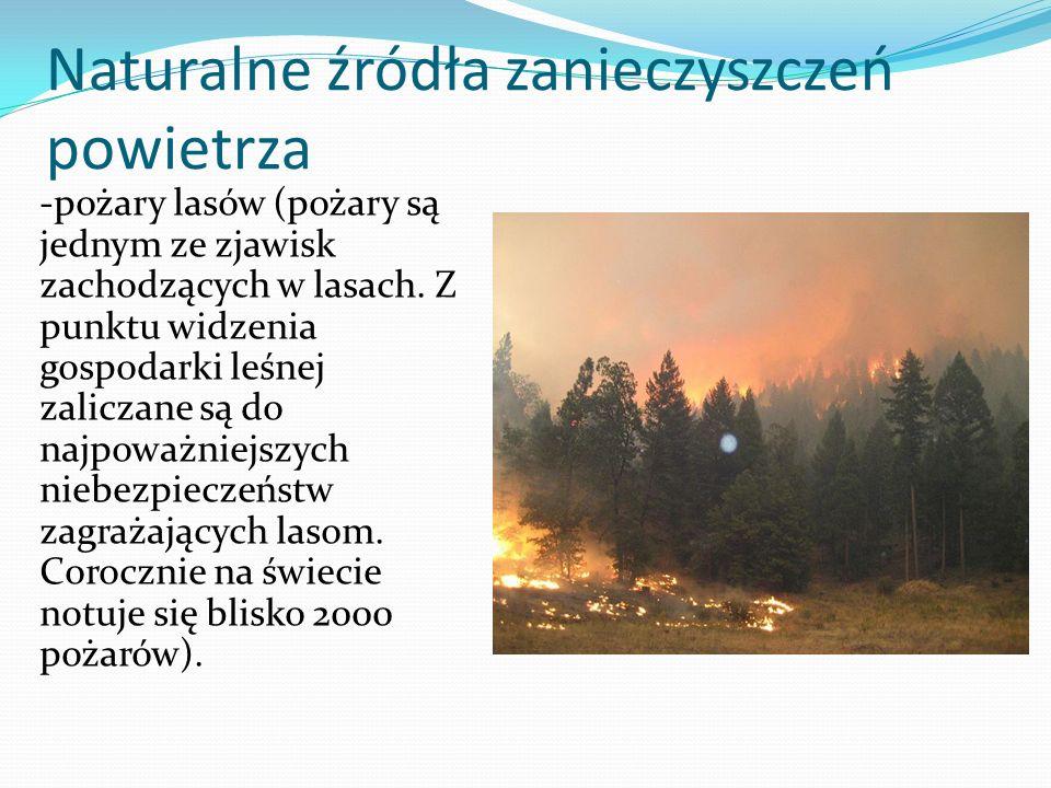 Naturalne źródła zanieczyszczeń powietrza -pożary lasów (pożary są jednym ze zjawisk zachodzących w lasach. Z punktu widzenia gospodarki leśnej zalicz