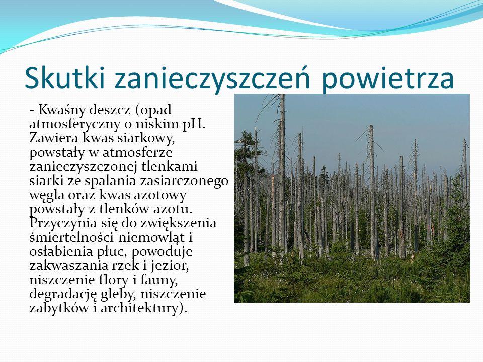 Skutki zanieczyszczeń powietrza - Kwaśny deszcz (opad atmosferyczny o niskim pH. Zawiera kwas siarkowy, powstały w atmosferze zanieczyszczonej tlenkam