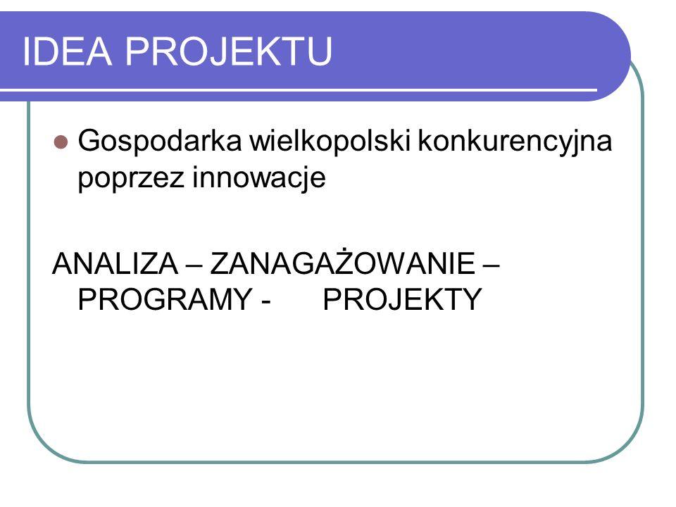 IDEA PROJEKTU Gospodarka wielkopolski konkurencyjna poprzez innowacje ANALIZA – ZANAGAŻOWANIE – PROGRAMY - PROJEKTY
