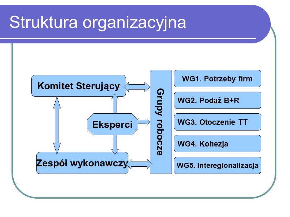 Struktura organizacyjna Komitet Sterujący Zespół wykonawczy Eksperci Grupy robocze WG1.