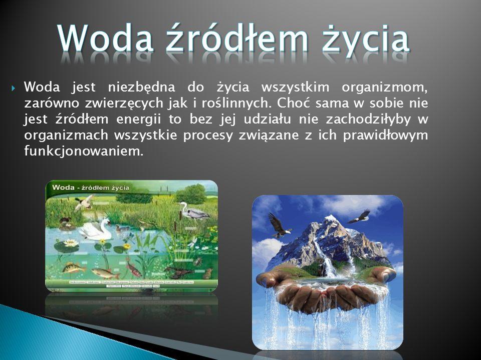  Woda jest niezbędna do życia wszystkim organizmom, zarówno zwierzęcych jak i roślinnych. Choć sama w sobie nie jest źródłem energii to bez jej udzia