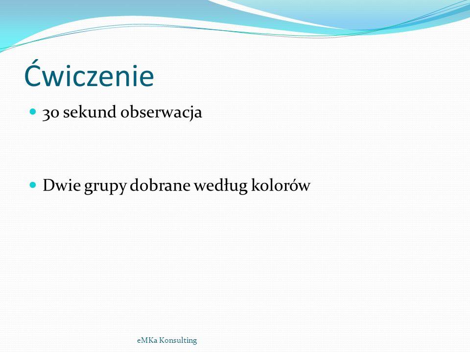 Ćwiczenie - wystąpienie publiczne przed kamerą. eMKa Konsulting