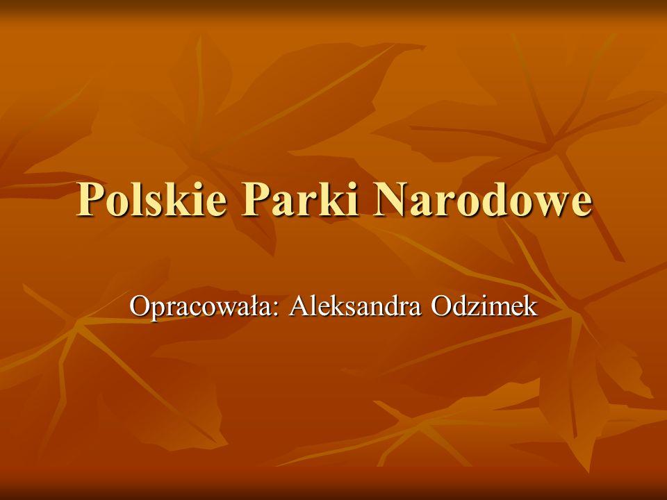 Polskie Parki Narodowe Opracowała: Aleksandra Odzimek