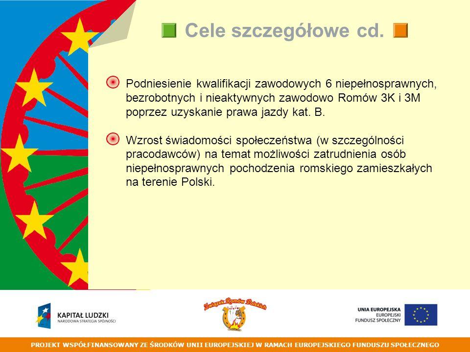PROJEKT WSPÓŁFINANSOWANY ZE ŚRODKÓW UNII EUROPEJSKIEJ W RAMACH EUROPEJSKIEGO FUNDUSZU SPOŁECZNEGO Cele szczegółowe cd.