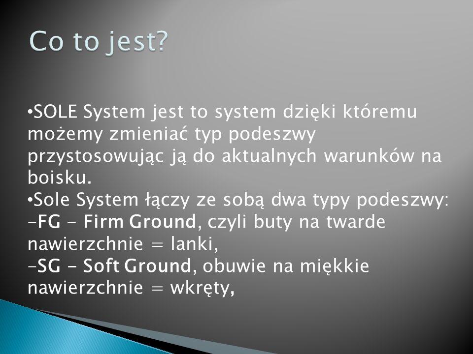 Produkcja systemu będzie zarezerwowana dla firmy, która wygra przetarg.