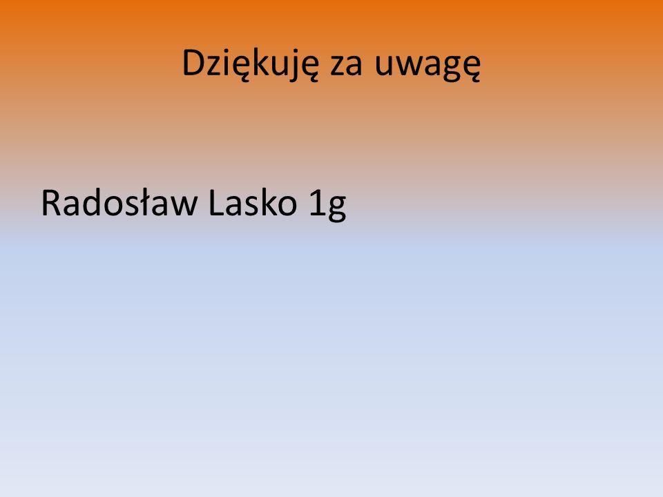 Dziękuję za uwagę Radosław Lasko 1g
