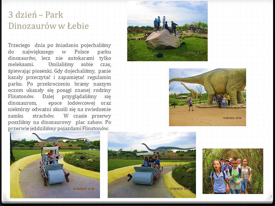 3 dzień – Park Dinozaurów w Łebie 0 Trzeciego dnia po ś niadaniu pojechali ś my do najwi ę kszego w Polsce parku dinozaurów, lecz nie autokarami tylko meleksami.