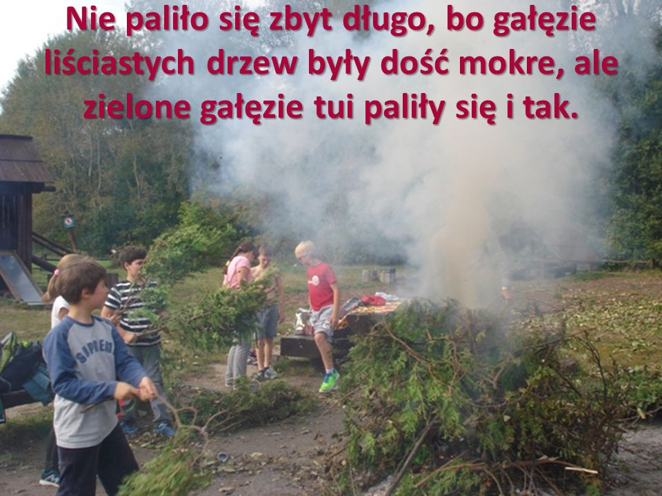 Nie paliło się zbyt długo, bo gałęzie liściastych drzew były dość mokre, ale zielone gałęzie tui paliły się i tak.
