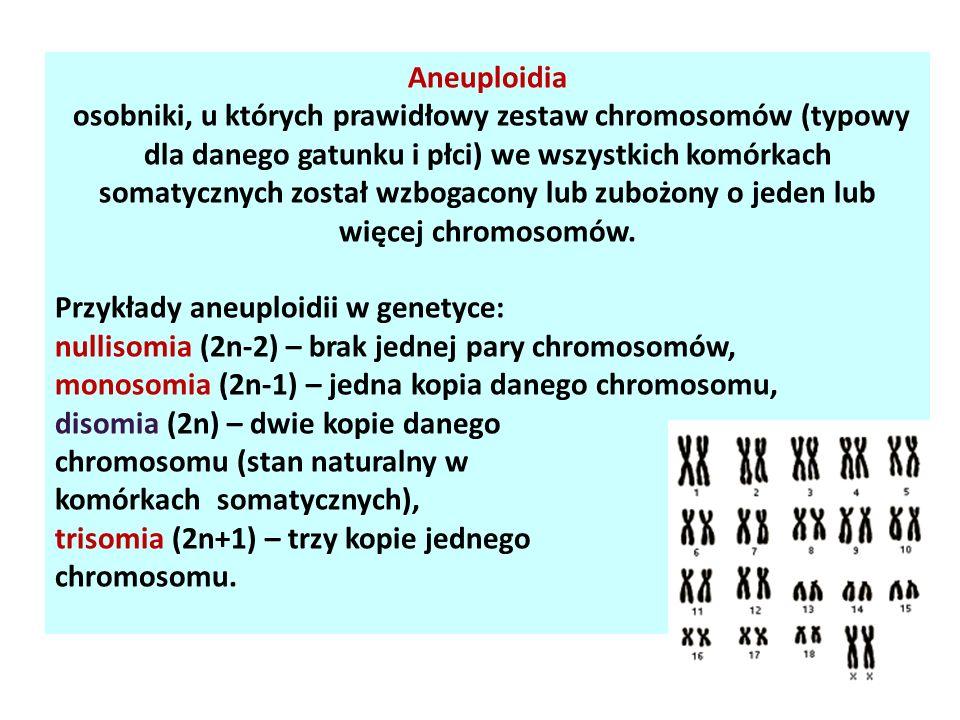 Aneuploidia osobniki, u których prawidłowy zestaw chromosomów (typowy dla danego gatunku i płci) we wszystkich komórkach somatycznych został wzbogacon