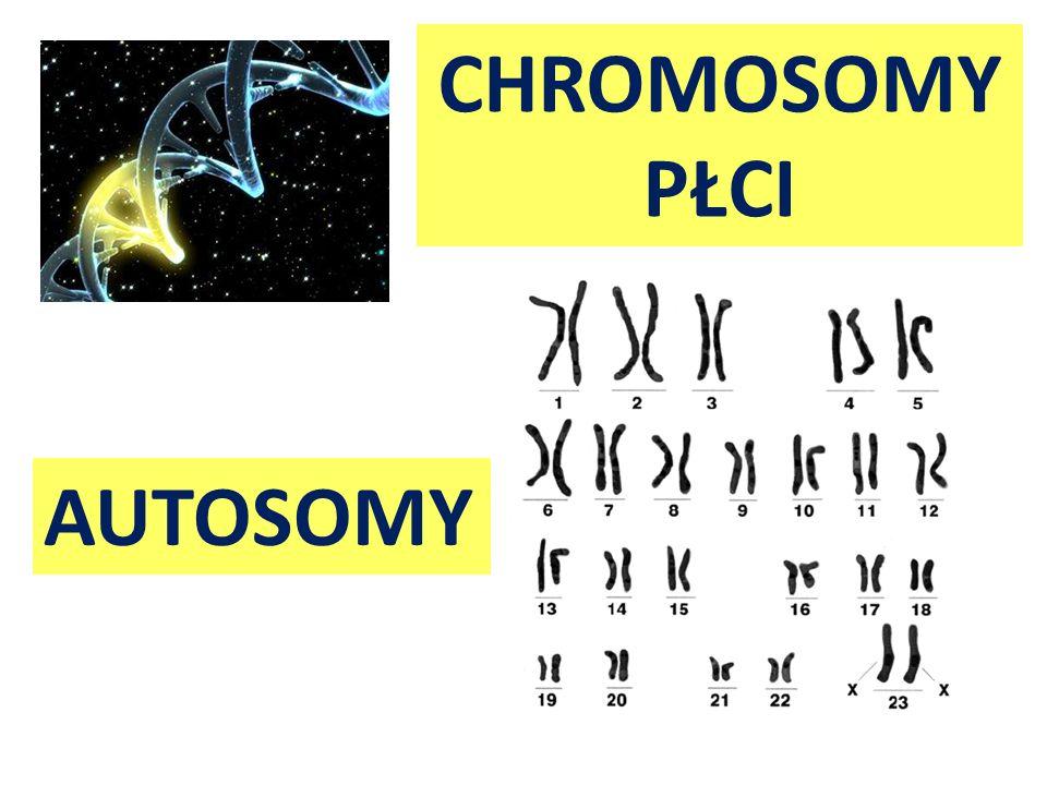 Choroby genetyczne wynikające z mutacji genowych autosomalnych