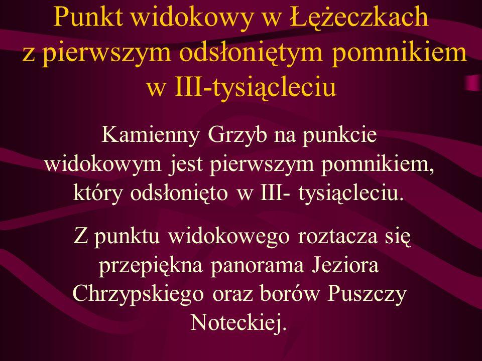 Punkt widokowy w Łężeczkach z pierwszym odsłoniętym pomnikiem w III-tysiącleciu Kamienny Grzyb na punkcie widokowym jest pierwszym pomnikiem, który odsłonięto w III- tysiącleciu.
