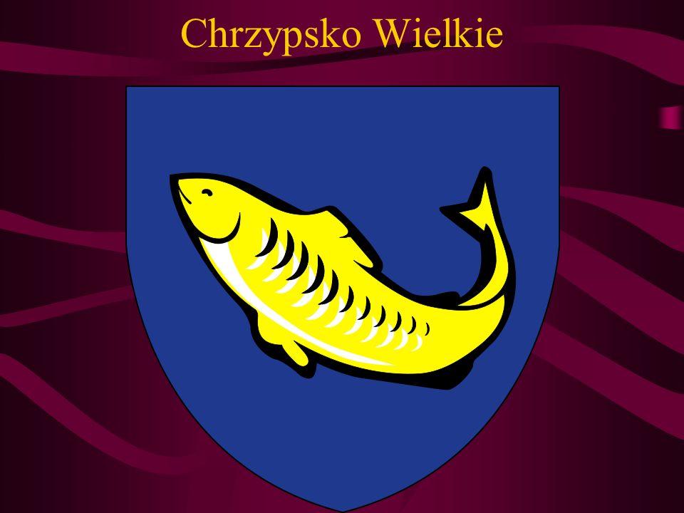 Miejscowość położona na Pojezierzu Międzychodzko – Sierakowskim, zwanym krainą 100 jezior.