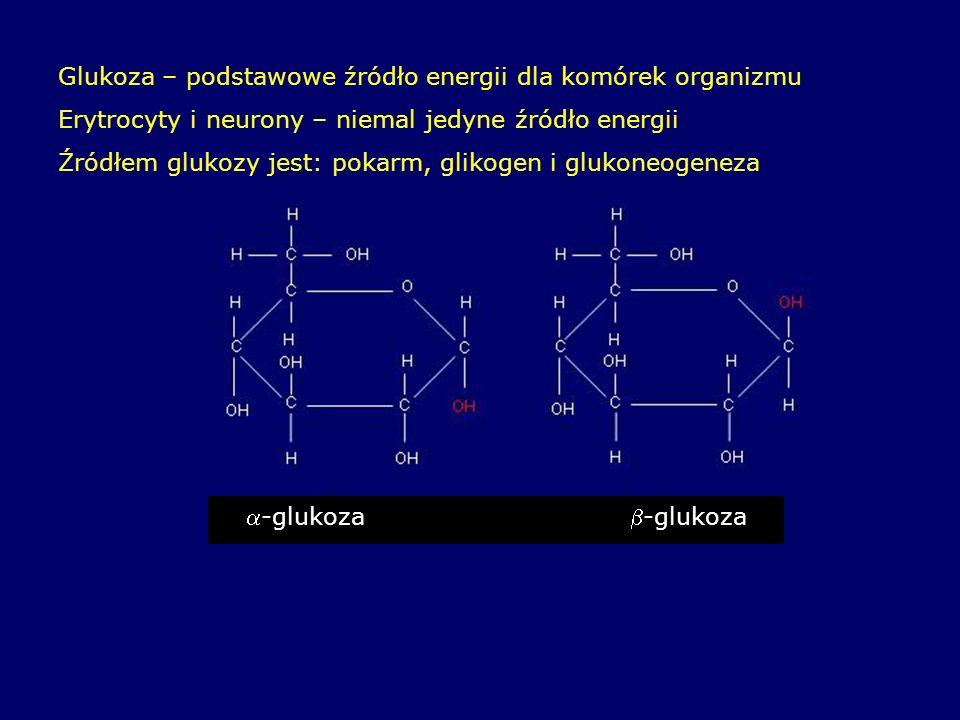 Glukoza – podstawowe źródło energii dla komórek organizmu Erytrocyty i neurony – niemal jedyne źródło energii Źródłem glukozy jest: pokarm, glikogen i glukoneogeneza -glukoza-glukoza