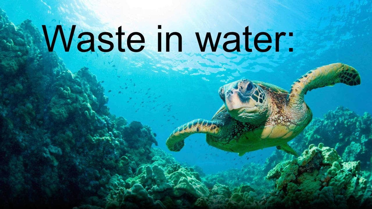 Waste in water: