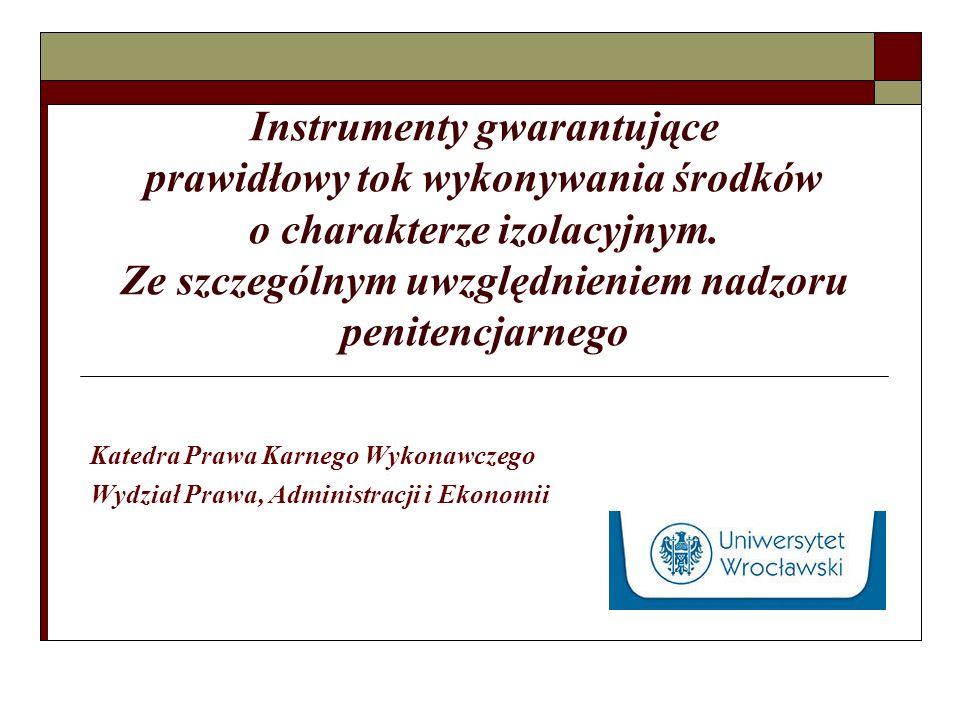 Instrumenty gwarantujące prawidłowy tok wykonywania środków o charakterze izolacyjnym.