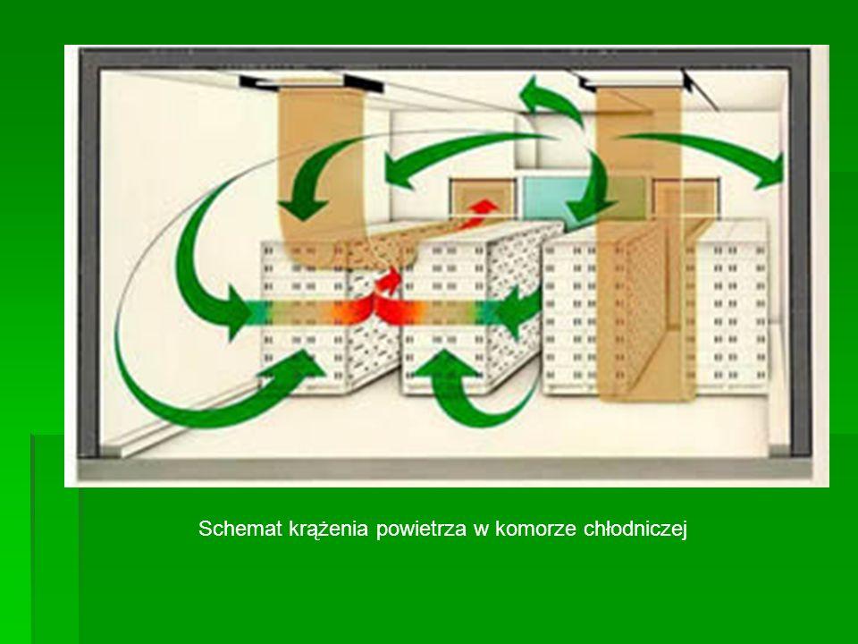Schemat krążenia powietrza w komorze chłodniczej