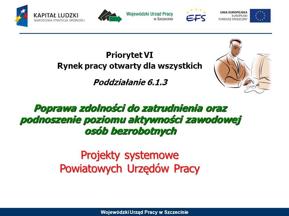 Wojewódzki Urząd Pracy w Szczecinie Priorytet VI Rynek pracy otwarty dla wszystkich Poddziałanie 6.1.3 Poprawa zdolności do zatrudnienia oraz podnoszenie poziomu aktywności zawodowej osób bezrobotnych Projekty systemowe Powiatowych Urzędów Pracy
