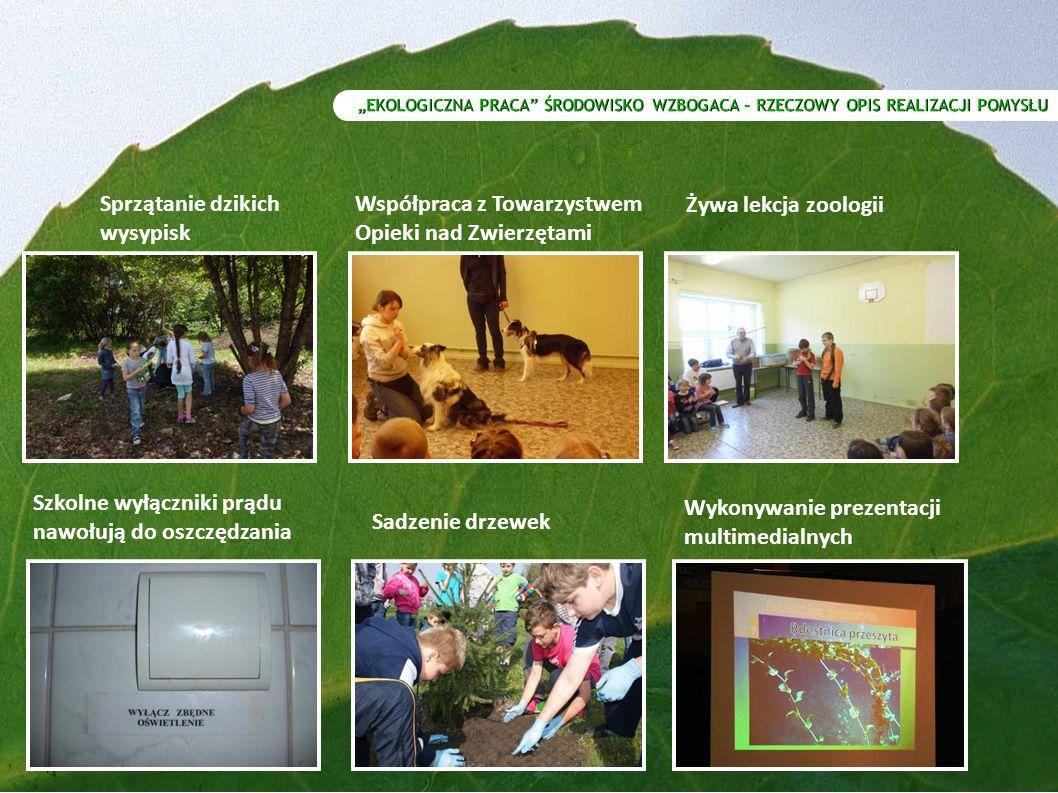 """""""EKOLOGICZNA PRACA ŚRODOWISKO WZBOGACA – RZECZOWY OPIS REALIZACJI POMYSŁU Sprzątanie dzikich wysypisk Współpraca z Towarzystwem Opieki nad Zwierzętami Żywa lekcja zoologii Sadzenie drzewek Wykonywanie prezentacji multimedialnych Szkolne wyłączniki prądu nawołują do oszczędzania"""