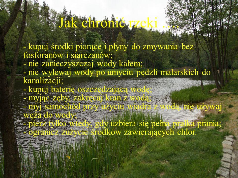Jak chronić rzeki …. - kupuj środki piorące i płyny do zmywania bez fosforanów i siarczanów; - nie zanieczyszczaj wody kałem; - nie wylewaj wody po um