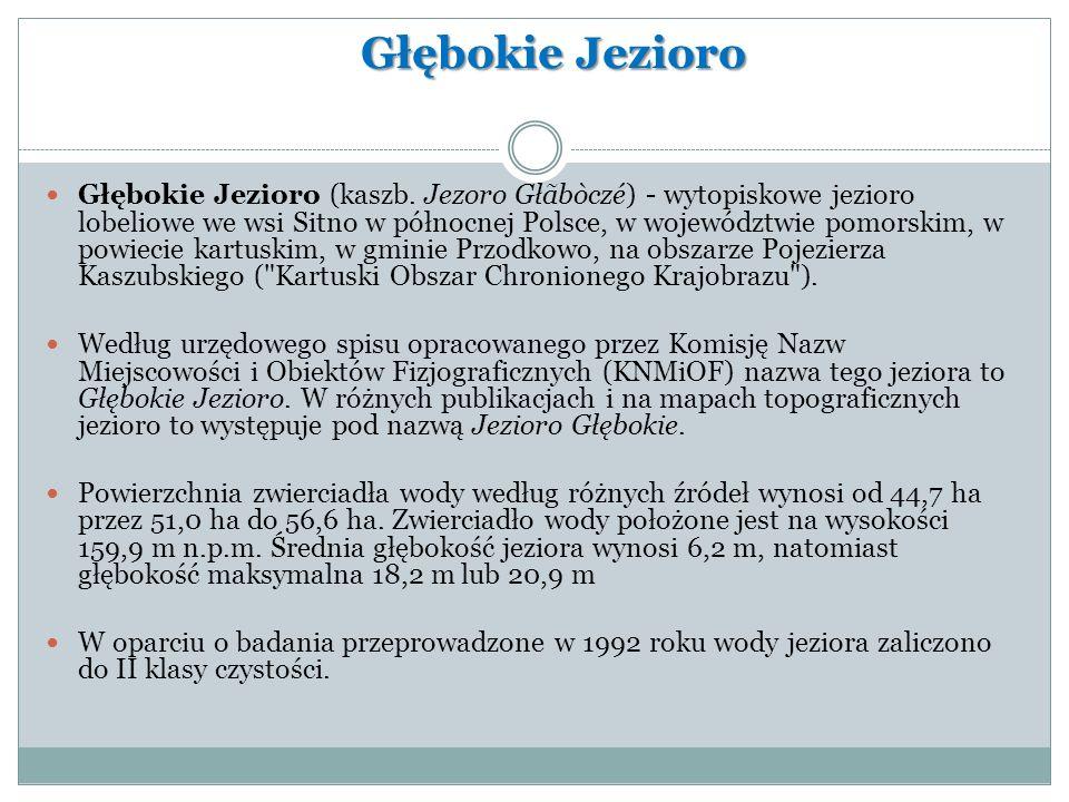 Głębokie Jezioro Głębokie Jezioro (kaszb. Jezoro Głãbòczé) - wytopiskowe jezioro lobeliowe we wsi Sitno w północnej Polsce, w województwie pomorskim,