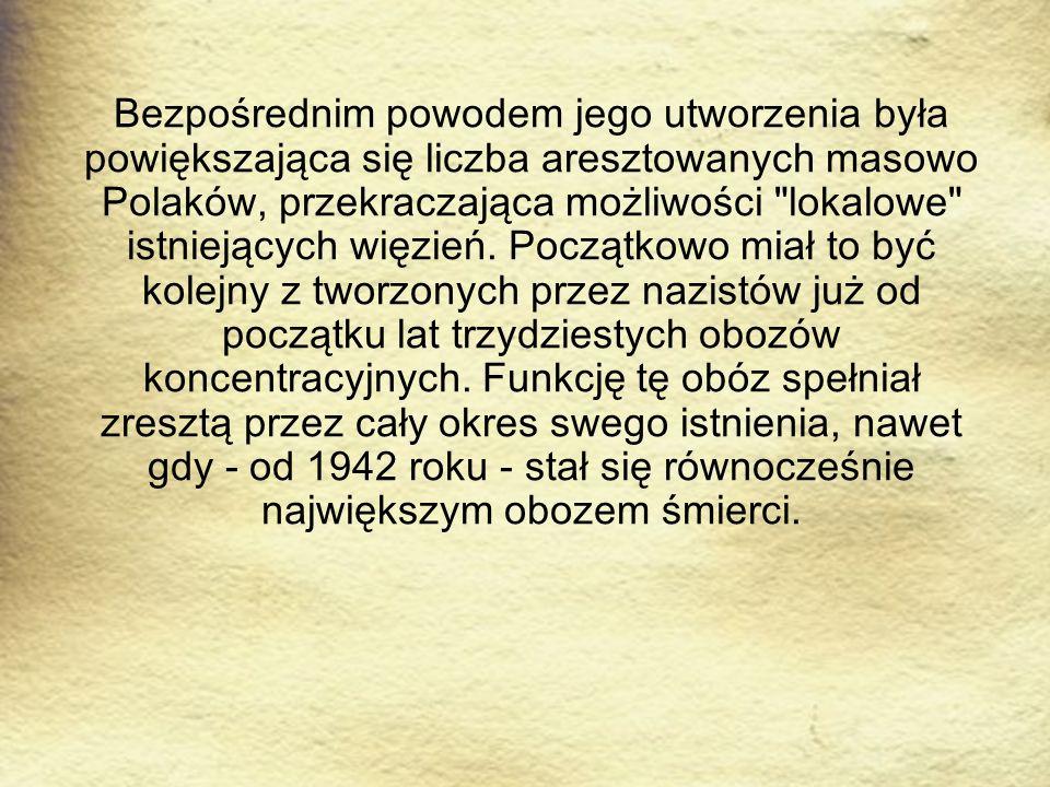 Bezpośrednim powodem jego utworzenia była powiększająca się liczba aresztowanych masowo Polaków, przekraczająca możliwości