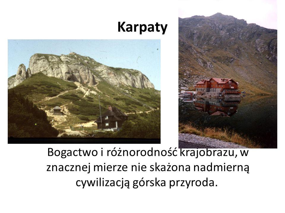 Karpaty Bogactwo i różnorodność krajobrazu, w znacznej mierze nie skażona nadmierną cywilizacją górska przyroda.
