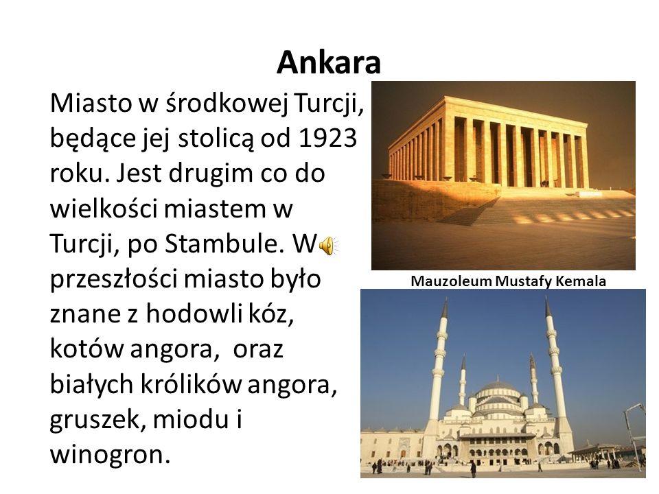 Ankara Miasto w środkowej Turcji, będące jej stolicą od 1923 roku. Jest drugim co do wielkości miastem w Turcji, po Stambule. W przeszłości miasto był