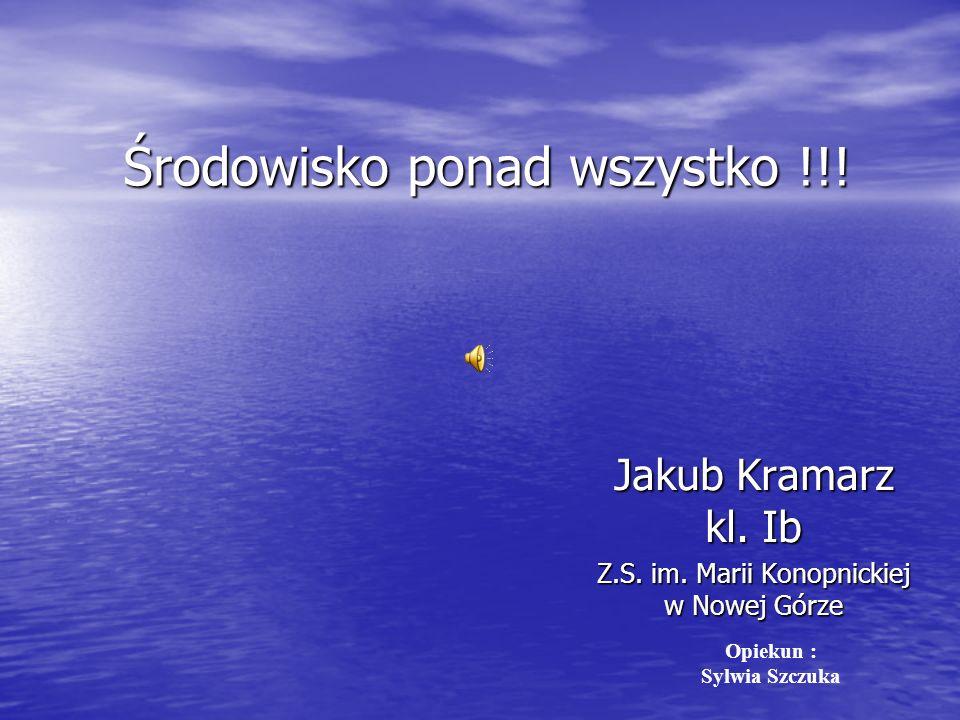 Środowisko ponad wszystko !!.Jakub Kramarz kl. Ib Z.S.