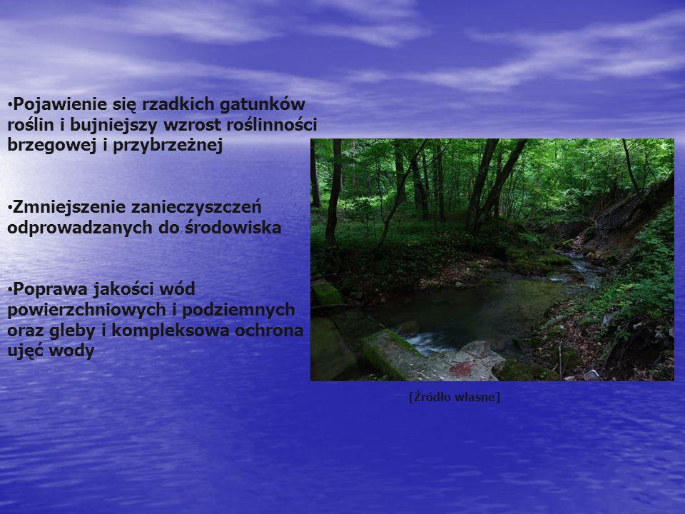 Pojawienie się rzadkich gatunków roślin i bujniejszy wzrost roślinności brzegowej i przybrzeżnej Zmniejszenie zanieczyszczeń odprowadzanych do środowiska Poprawa jakości wód powierzchniowych i podziemnych oraz gleby i kompleksowa ochrona ujęć wody [Źródło własne]