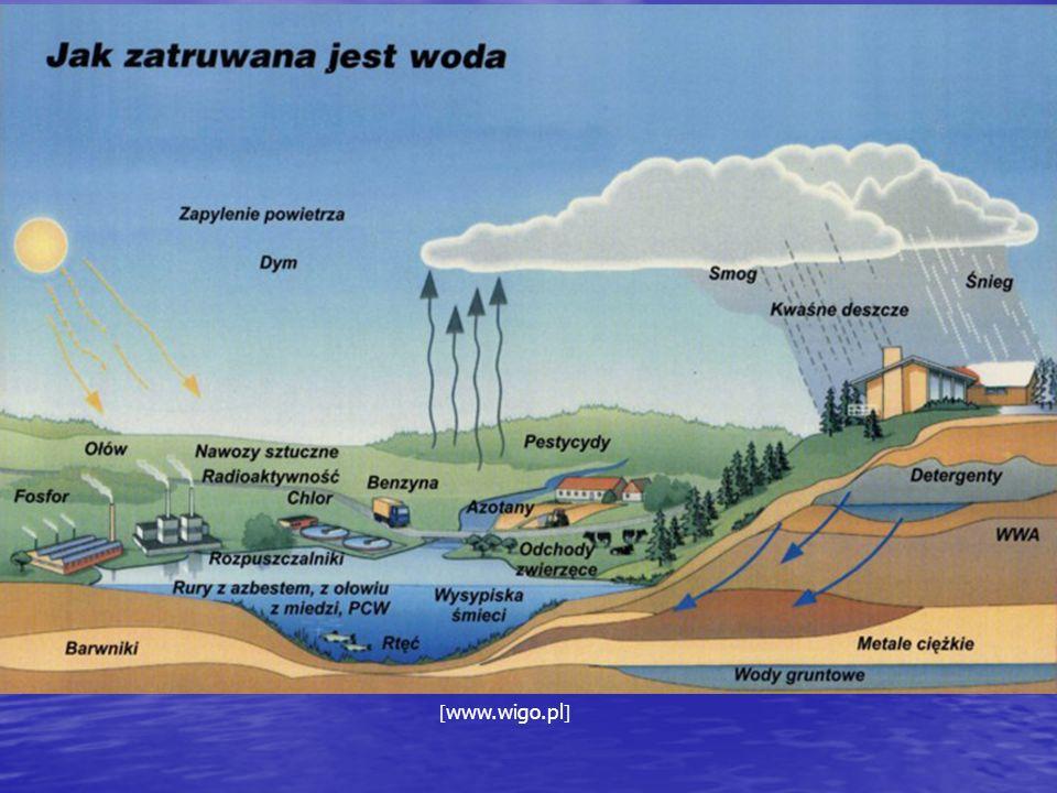 Sposoby oczyszczania wody Sposoby mechaniczne proces cedzenia – zasada pracy filtrów piaskowych proces cedzenia – zasada pracy filtrów piaskowych proces wznoszenia – zanieczyszczenia o mniejszej gęstości niż woda wypływają na jej powierzchnię proces wznoszenia – zanieczyszczenia o mniejszej gęstości niż woda wypływają na jej powierzchnię proces sedymentacji – ciała o większej gęstości opadają na dno proces sedymentacji – ciała o większej gęstości opadają na dno
