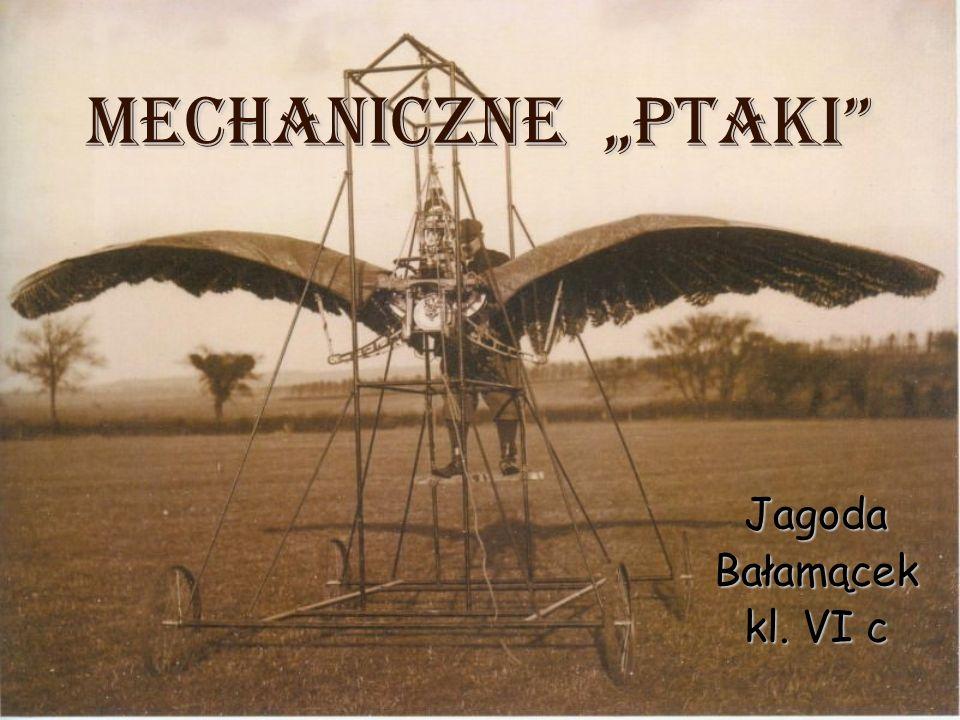 """Mechaniczne """"PTAKI"""" JagodaBałamącek kl. VI c"""