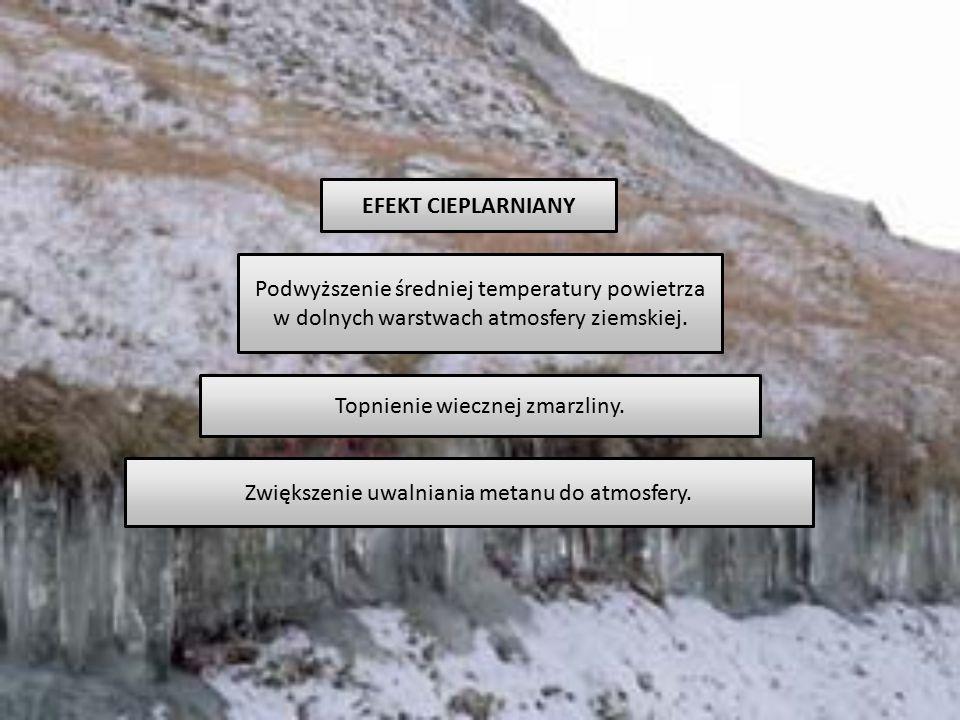 EFEKT CIEPLARNIANY Podwyższenie średniej temperatury powietrza w dolnych warstwach atmosfery ziemskiej. Topnienie wiecznej zmarzliny. Zwiększenie uwal