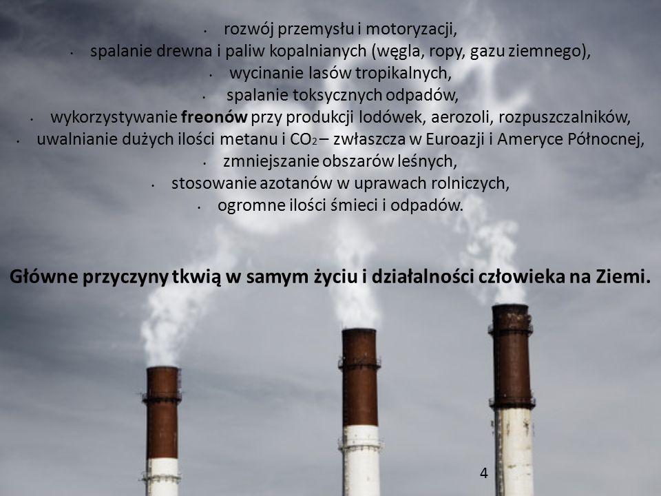 rozwój przemysłu i motoryzacji, spalanie drewna i paliw kopalnianych (węgla, ropy, gazu ziemnego), wycinanie lasów tropikalnych, spalanie toksycznych