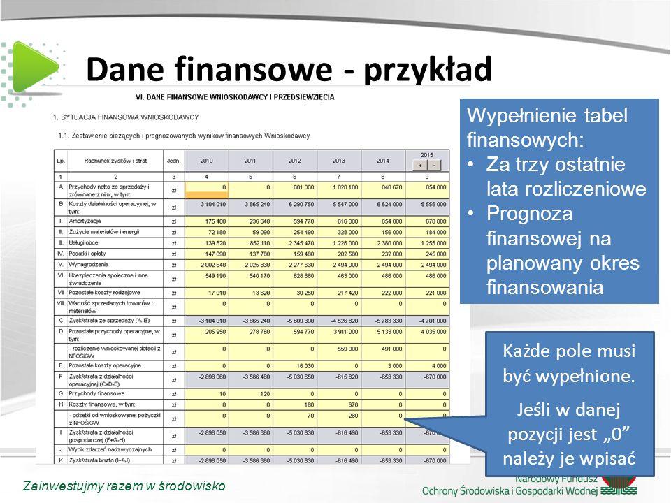 """Zainwestujmy razem w środowisko Dane finansowe - przykład Każde pole musi być wypełnione. Jeśli w danej pozycji jest """"0"""" należy je wpisać Wypełnienie"""