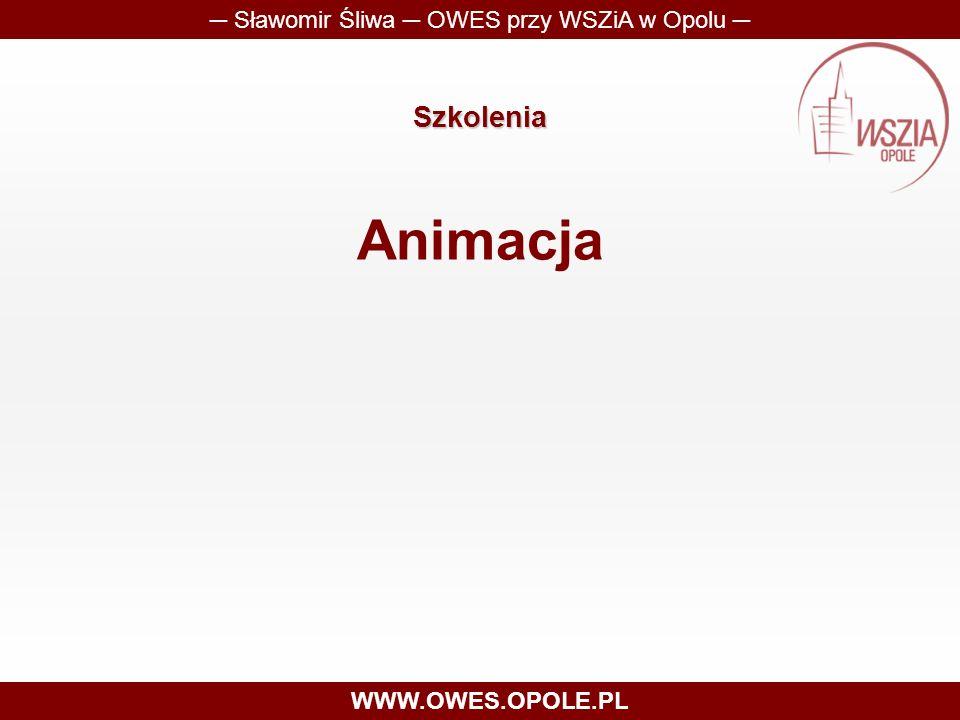 Szkolenia Animacja ─ Sławomir Śliwa ─ OWES przy WSZiA w Opolu ─ WWW.OWES.OPOLE.PL