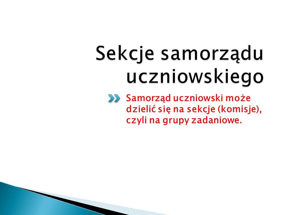 Samorząd uczniowski może dzielić się na sekcje (komisje), czyli na grupy zadaniowe.