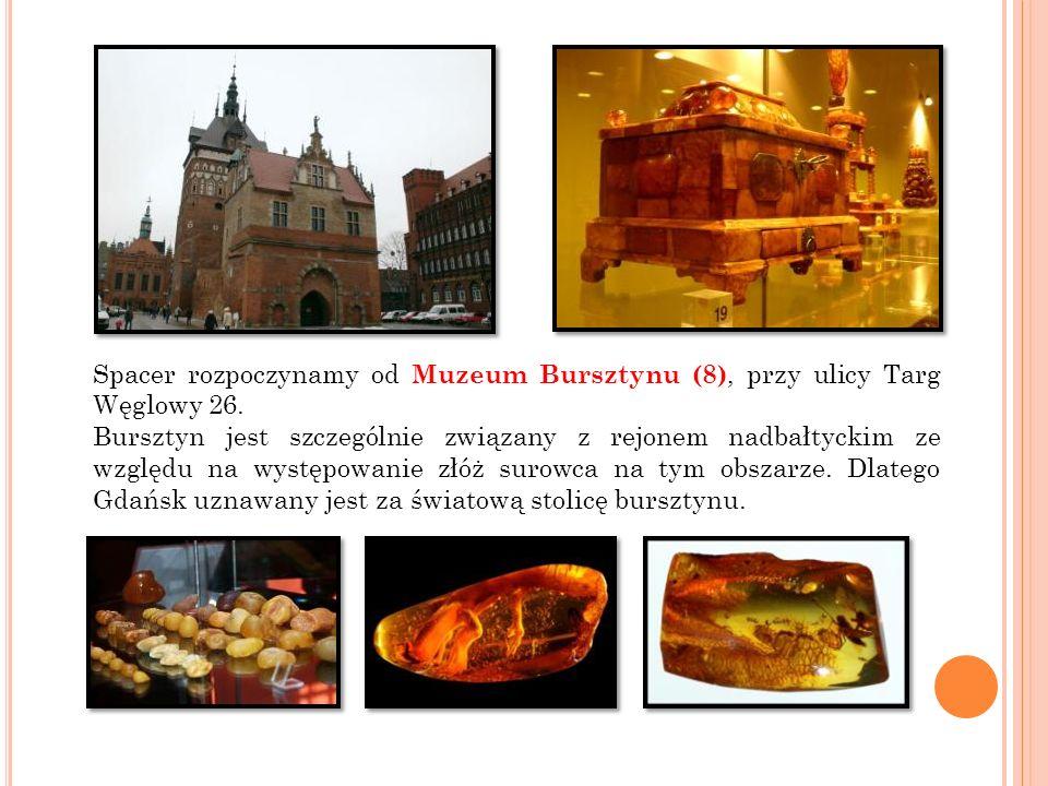 Spacer rozpoczynamy od Muzeum Bursztynu (8), przy ulicy Targ Węglowy 26. Bursztyn jest szczególnie związany z rejonem nadbałtyckim ze względu na wystę