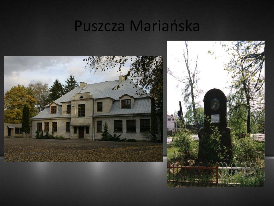 Puszcza Mariańska