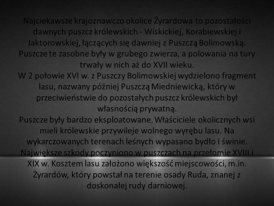 Najciekawsze krajoznawczo okolice Żyrardowa to pozostałości dawnych puszcz królewskich - Wiskickiej, Korabiewskiej i Jaktorowskiej, łączących się dawn