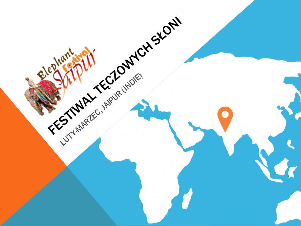 FESTIWAL TĘCZOWYCH SŁONI LUTY-MARZEC, JAIPUR (INDIE)