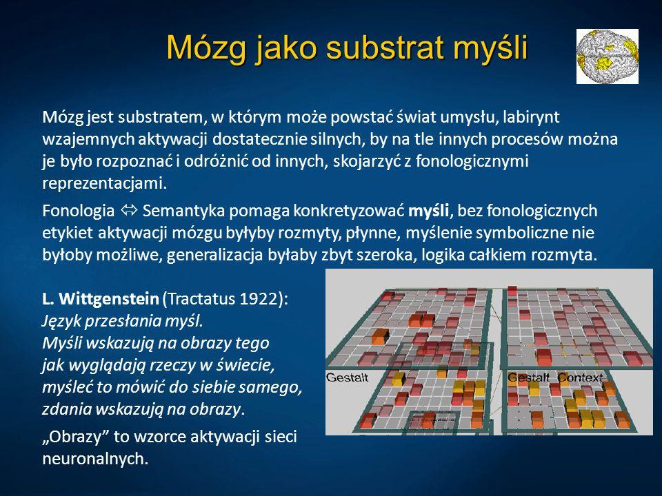 Mózg jako substrat myśli Mózg jest substratem, w którym może powstać świat umysłu, labirynt wzajemnych aktywacji dostatecznie silnych, by na tle innych procesów można je było rozpoznać i odróżnić od innych, skojarzyć z fonologicznymi reprezentacjami.