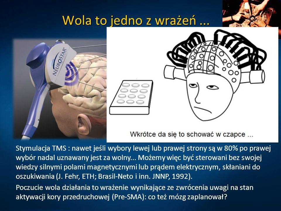 Wola to jedno z wrażeń... Wegner DM, The illusion of conscious will.