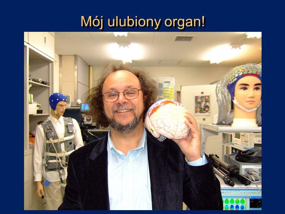 Jak rozumiem świadomość.Neurofenomenologia.