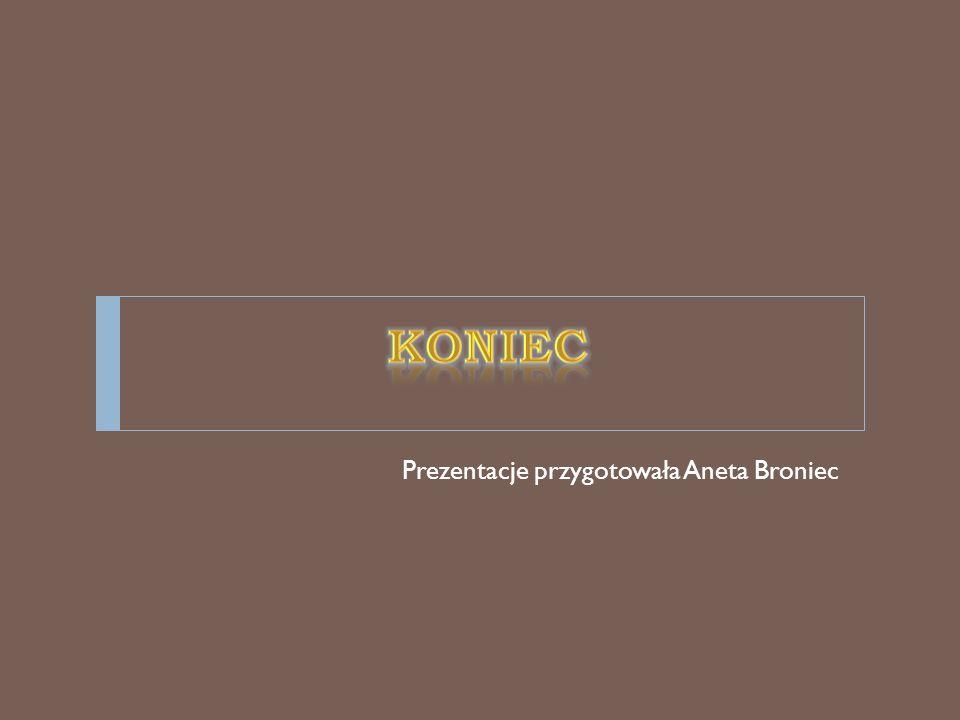 Prezentacje przygotowała Aneta Broniec