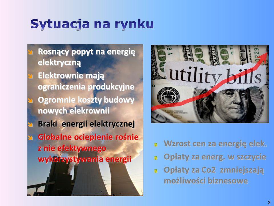 Wzrost cen za energię elek. Opłaty za energ. w szczycie Opłaty za Co2 zmniejszają możliwości biznesowe  Rosnący popyt na energię elektryczną  Elektr